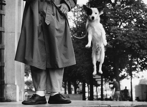 Erwitt Paris 1989