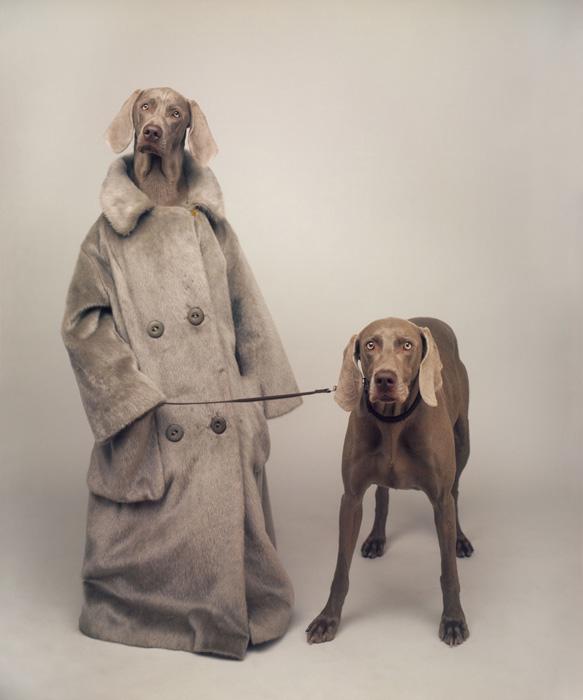 Wegman Dog Walker 1990
