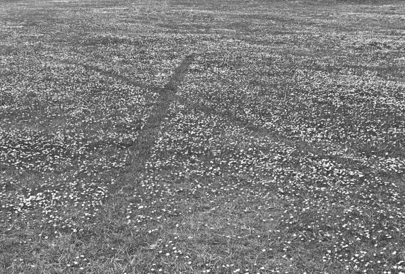Richard Long, England, 1968