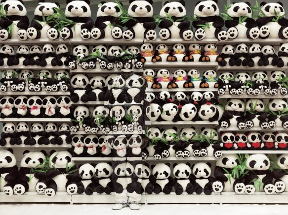 Liu Bolin, Hiding in the City - Panda, 2012